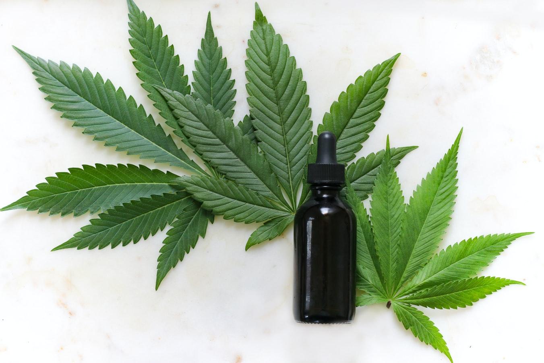 cbd-olie-cannabis-blad