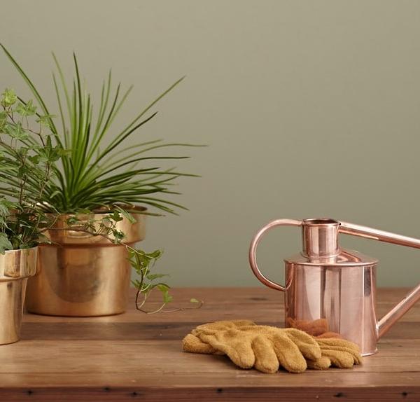 planten-gouden-potten
