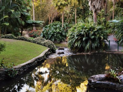 kleine-vijver-tuin